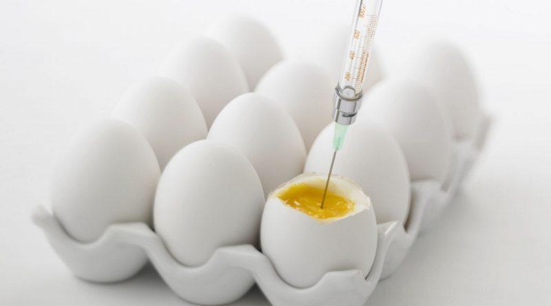 vacinas e alergia a ovo