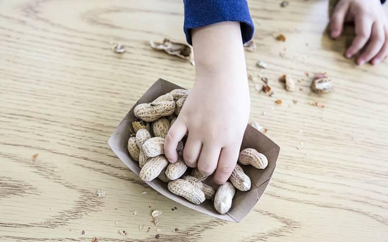 tratamento da alergia alimentar